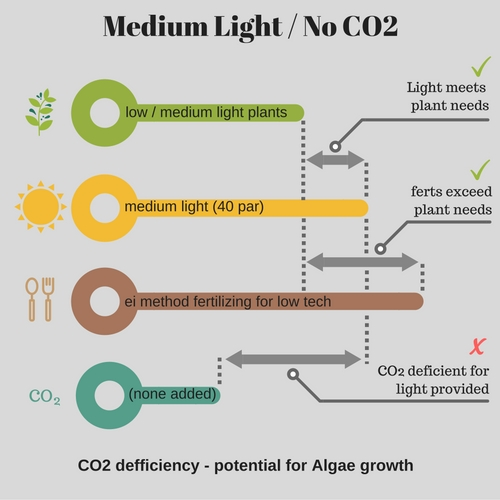 medium light with no co2