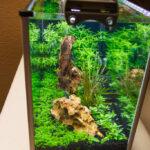 high tech spec v aquarium