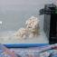 Project Evo Marine Part 8: Fluval EVO 13.5 Saltwater Aquarium Setup