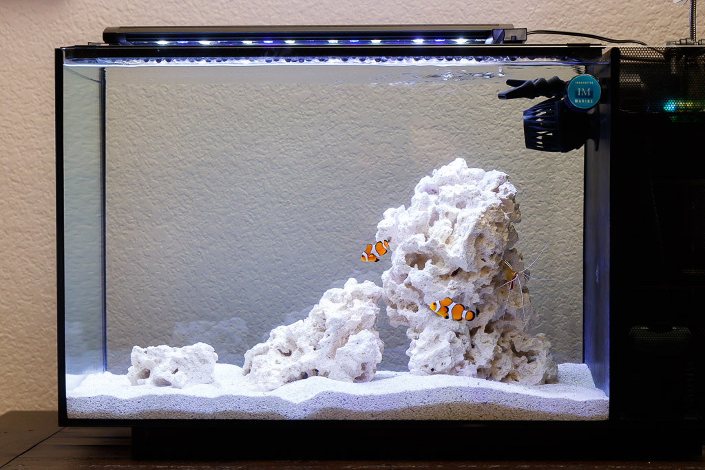 Fluval EVO 13.5 Saltwater Nano