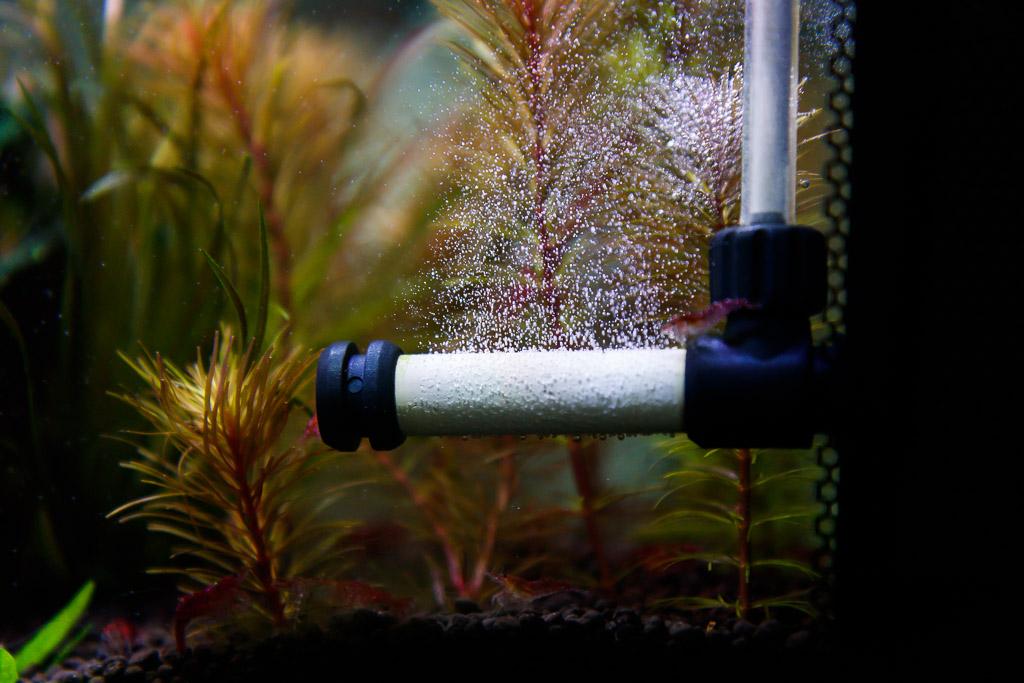 bazooka in-tank co2 diffuser in a nano planted aquarium